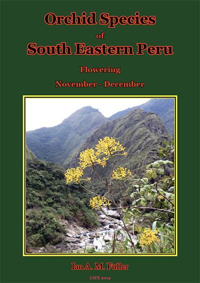 Orchid book 1 (Flowering species -November/December). image