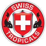Swiss Tropicals